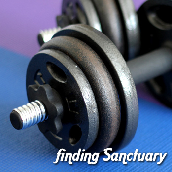 finding Sanctuary » Update